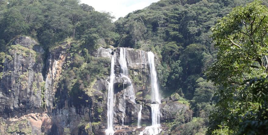 Udzungwa Mountains National Park Tanzania